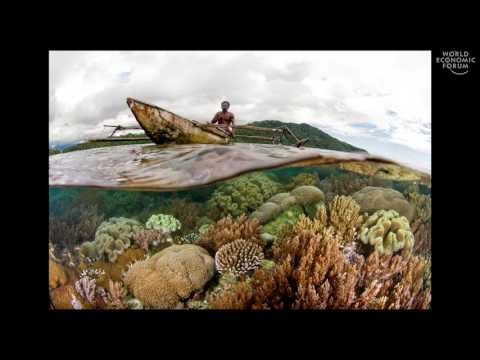 Worlds Underwater | Douglas McCauley