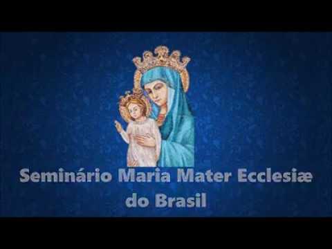 Coro de seminaristas del Brasil cantando Viva Cristo Rey