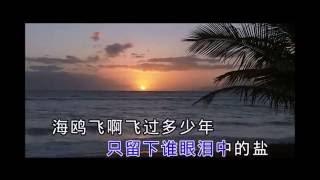 張靚穎Jane Zhang【海風吹】KTV (山水實景演出《印象·海南島》片尾曲)(飯制版)