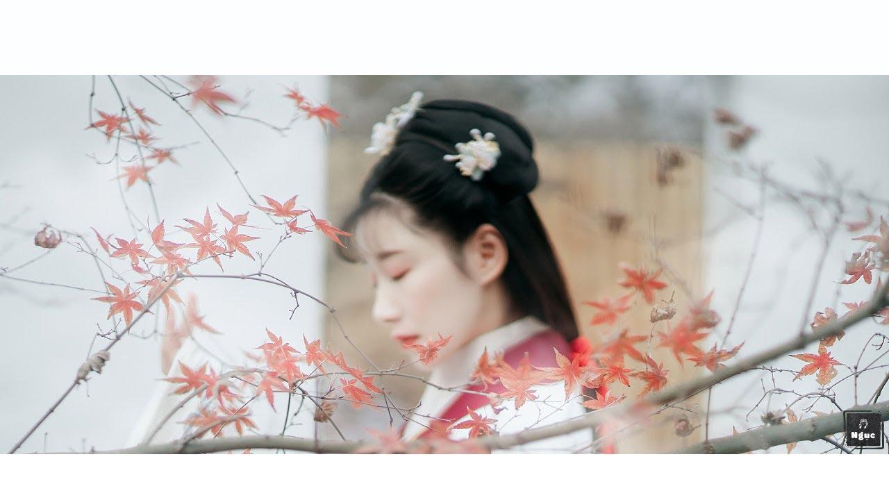 [Vietsub + Pinyin] Thương Ly Biệt - Ngụy Tân Vũ |  伤离别 -- 魏新雨