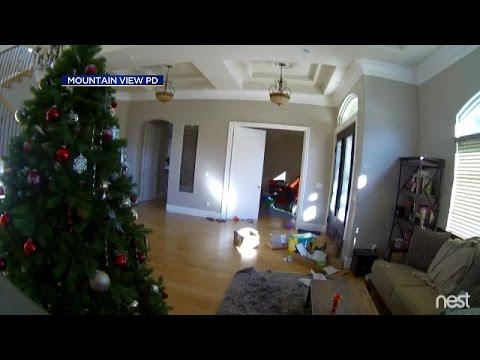 Raw Video: Burglars Hit Mountain View Home