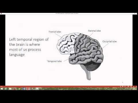 Language Development and the Brain2