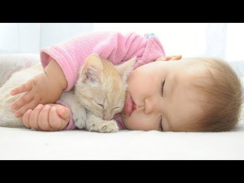 Adorable kittens playing with babies and kids - CUTENESS OVERLOAD cat & baby compilation