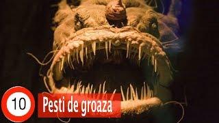 Top 10 Pești de Groază