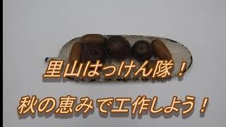 バーチャル里山はっけん隊!第2部〜秋の恵みで工作しよう!〜
