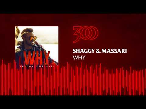 Shaggy & Massari - Why | 300 Ent (Official Audio)