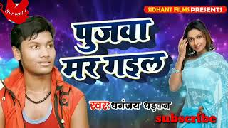 Pujawa Mar gail ( Dhannjay dharkan) New song 2018