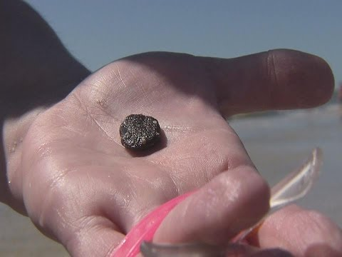 Deadly Bacteria Virbrio Vulnificus in High Numbers in Tarballs