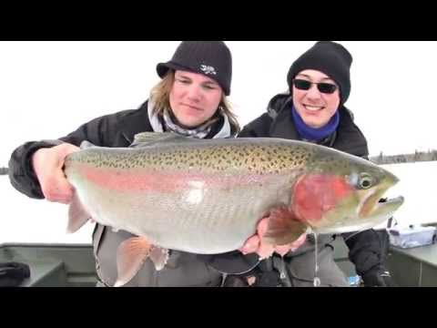 Weedline Shamu Rainbow Trout - Uncut Angling - March 15, 2014