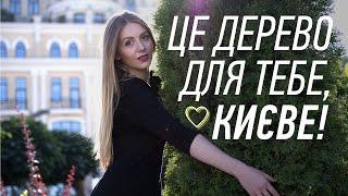 Це дерево для тебе, Києве!