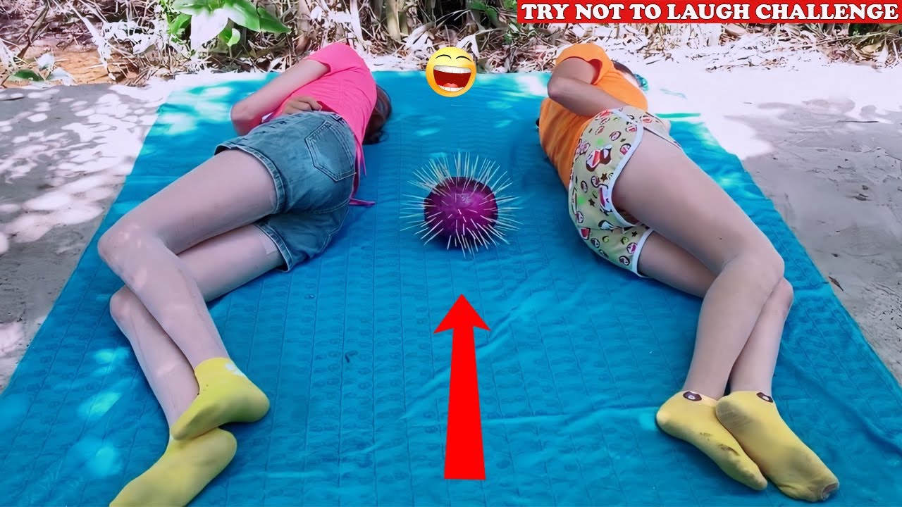 Try Not To Laugh ? New Funny Videos 2020 - Episode 80 | Sun Wukong
