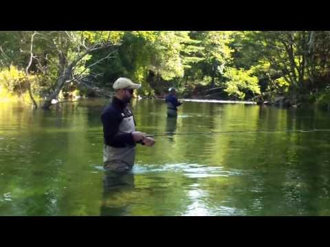 Swift River Fly Fish MA