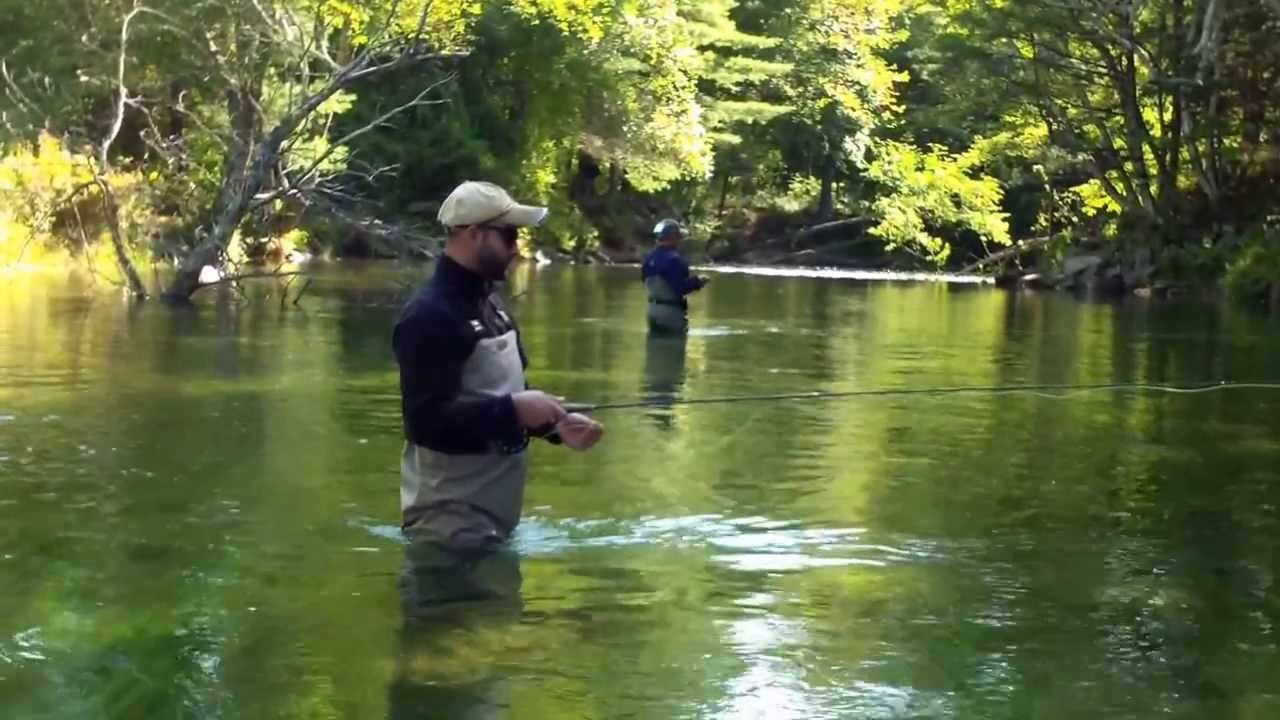 Swift river fly fish ma youtube for Fly fishing massachusetts