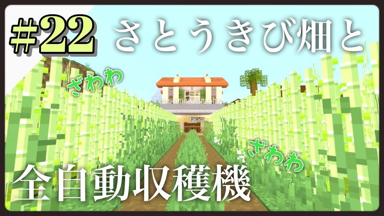 畑 マイクラ サトウキビ