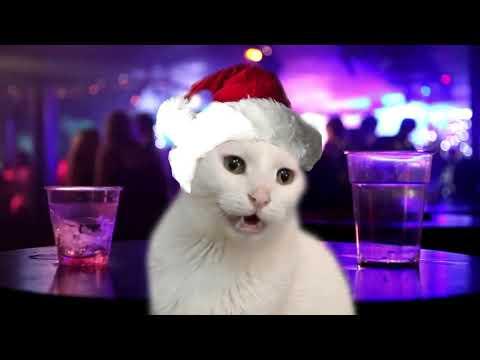 Jingle Cats - Cats Sing Jingle Bells | Jazz |  Cats Singing Christmas Songs