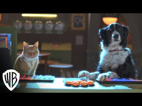 Cats & Dogs 3 | Trailer | Warner Bros. Entertainment