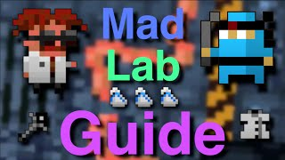 RotMG - Mad Lab Guide