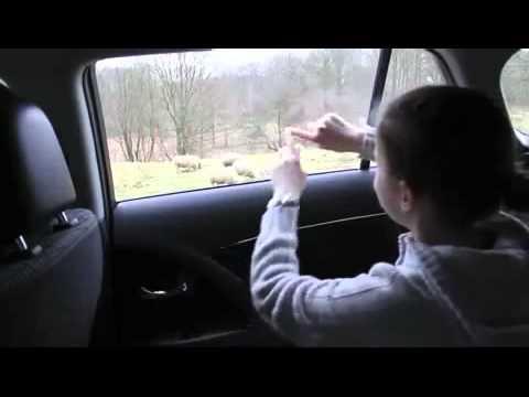 Back Seat Transparent Touchscreen Window