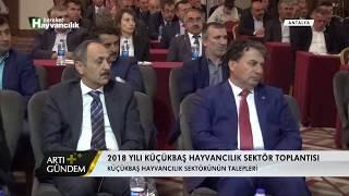 Artı Gündem - 2018 Küçükbaş Hayvancılık Sektör Toplantısı /Antalya