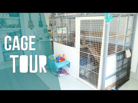 DIY Rabbit Cage - Cage Tour