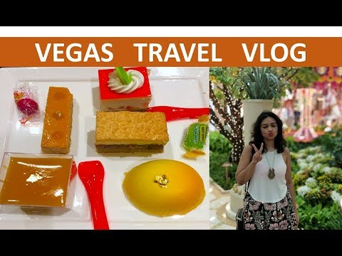 Indian Girl in Vegas | Travel Vlog | Summer 2017 | Travel Guide | Vegas Buffet