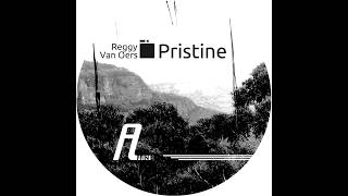 Reggy van Oers - Pristine (Original Mix) (Affin 024 LTD)
