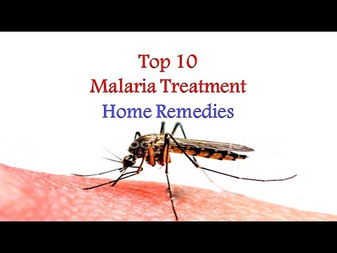 Top 10 Malaria Treatment Home Remedies | Malaria – symptoms, causes and home treatment thumbnail