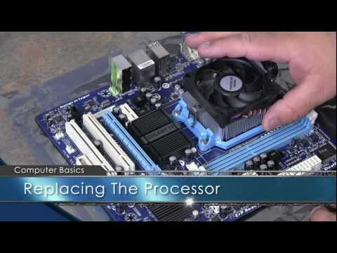 Computer Basics: Hardware