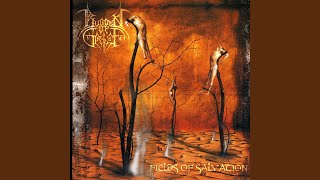 Fields Of Salvation (Instrumental)