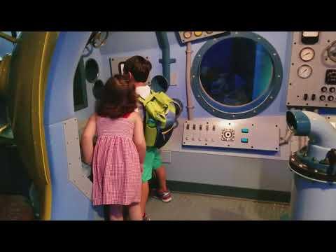 Sheqq Aquarium has this cool submarine