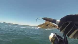 Saltwater Fishing whit Shimano Stella