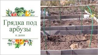 Подготовка грядки для посадки арбузов и дынь.