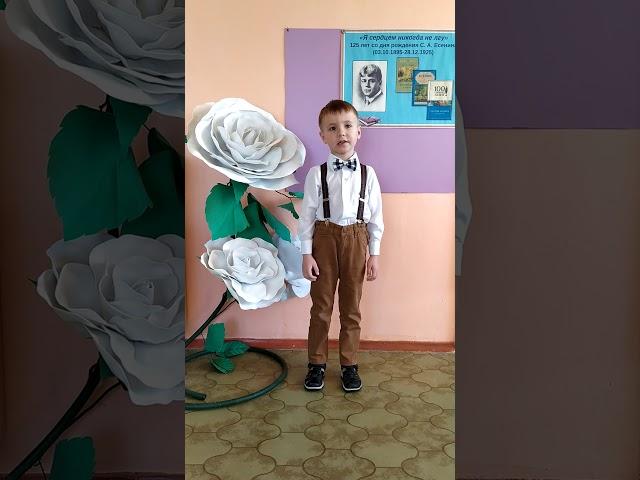 Изображение предпросмотра прочтения – АлександрЛасточкин читает произведение «Нивы сжаты, рощи голы…» С.А.Есенина