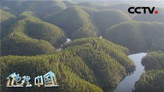 《地理·中国》 20200329 自然胜景·姑婆山的传说 上| CCTV科教