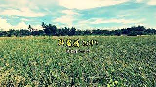 歸農棧 2019 - 歸農棧 Part 31