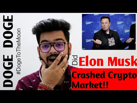 Did Elon Musk Crashed The Crypto Market?? | Now Doge Can Boom🔥💥