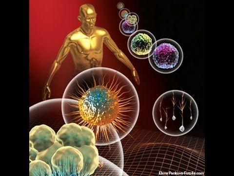 Human gene therapy, types of gene therapy part 1