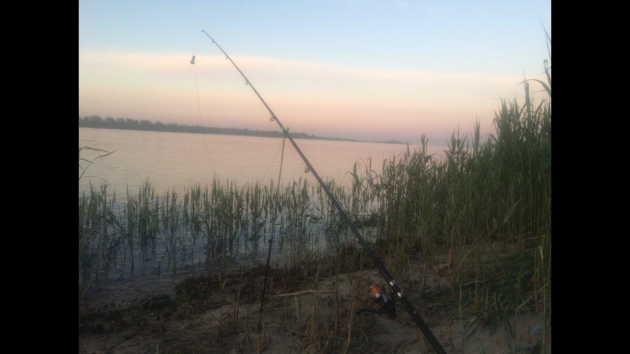 19 Скучная Рыбалка. Ловля С Берега на Реке Волга. Донная Ловля ...
