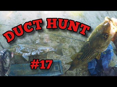 California Aqueduct Quickie Striped Bass Fishing May 2020