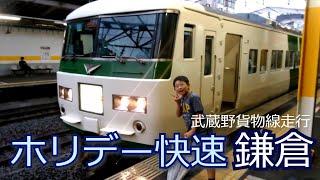 ホリデー快速鎌倉号乗車(185系)
