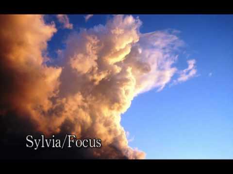 Sylvia / Focus Cover