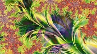 Ibojima - Organic visions