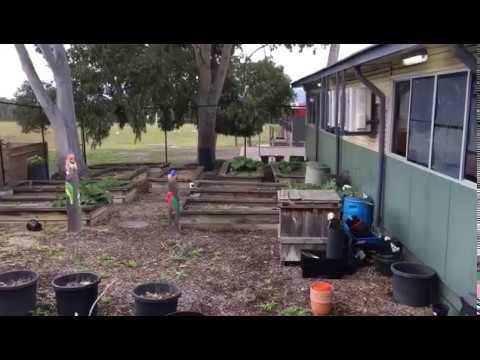 Livingstone Primary School -  Garden Video