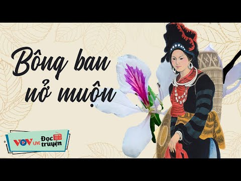 Bông Ban Nở Muộn   Đọc Truyện Đêm Khuya Đài Tiếng Nói Việt Nam   Truyện Ngắn Hay Về Tình Yêu VOV 406