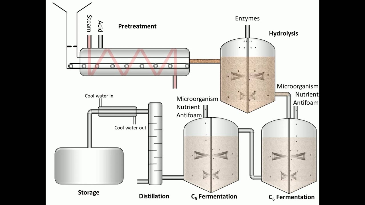 an analysis of the process of fermentation Importance of hplc analysis of residual saccharides a key measurement is the residual sugar and ethanol concentrations in the fermentation broth fuel ethanol facilities use high-performance liquid chromatography (hplc) as the technique of choice to monitor the ethanol fermentation process.