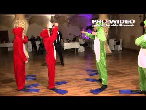 Dj Sromek, DJ na wesele Nowy Sącz,Małopolska, Śląsk , zabawy Kraków