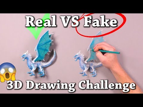 10 Real vs Drawing Illusions will Test Your Brain!