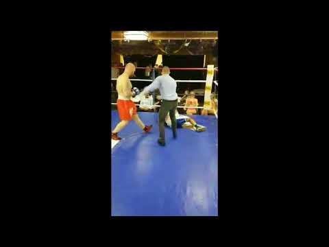 Danijel Boyka pro box brutal KO 2