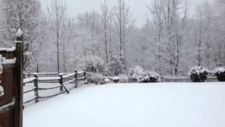 Snow storm Charlotte NC 2014