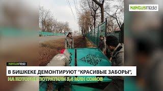 08_02_КактусНовости